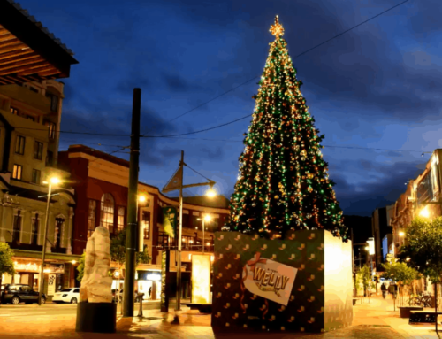 Christmas is coming to Wellington